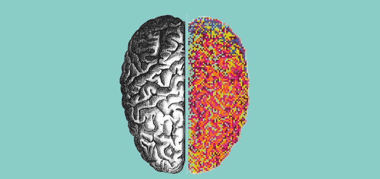 Incontriamoci al Museo: Mostra Brain
