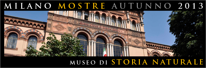 Mostra Museo Storia Naturale